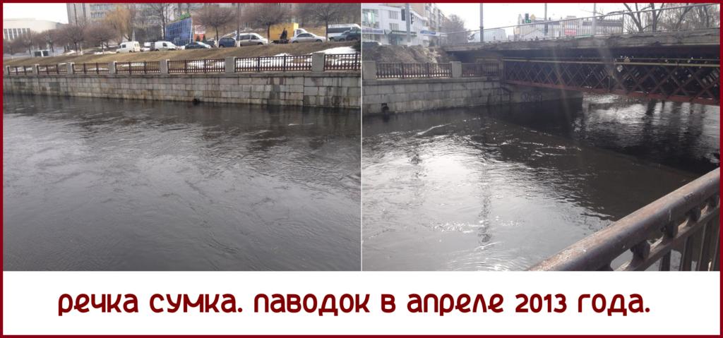 Сумка_04