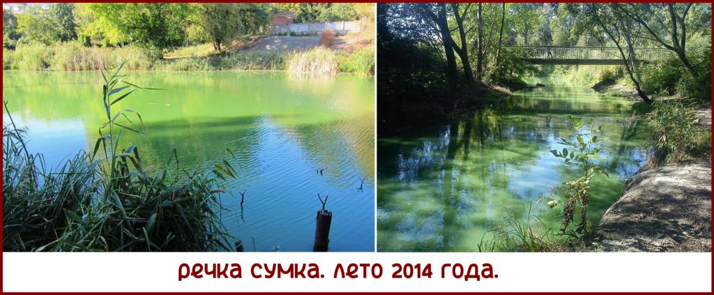 Сумка_05